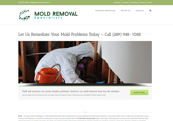 mold-removal-specialists
